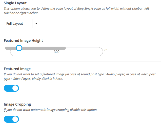 Amazing Blog - Single Layout Options
