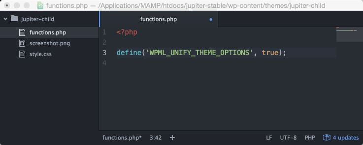 Setup WPML Child Theme Functions file
