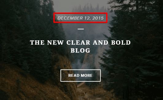 Blog shortcode - meta section