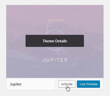 Updating theme and child theme - activate button