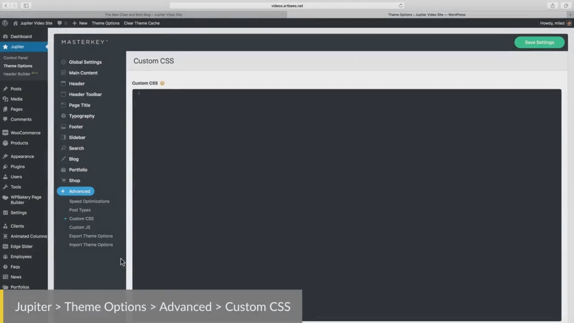 Inserting Custom CSS Codes